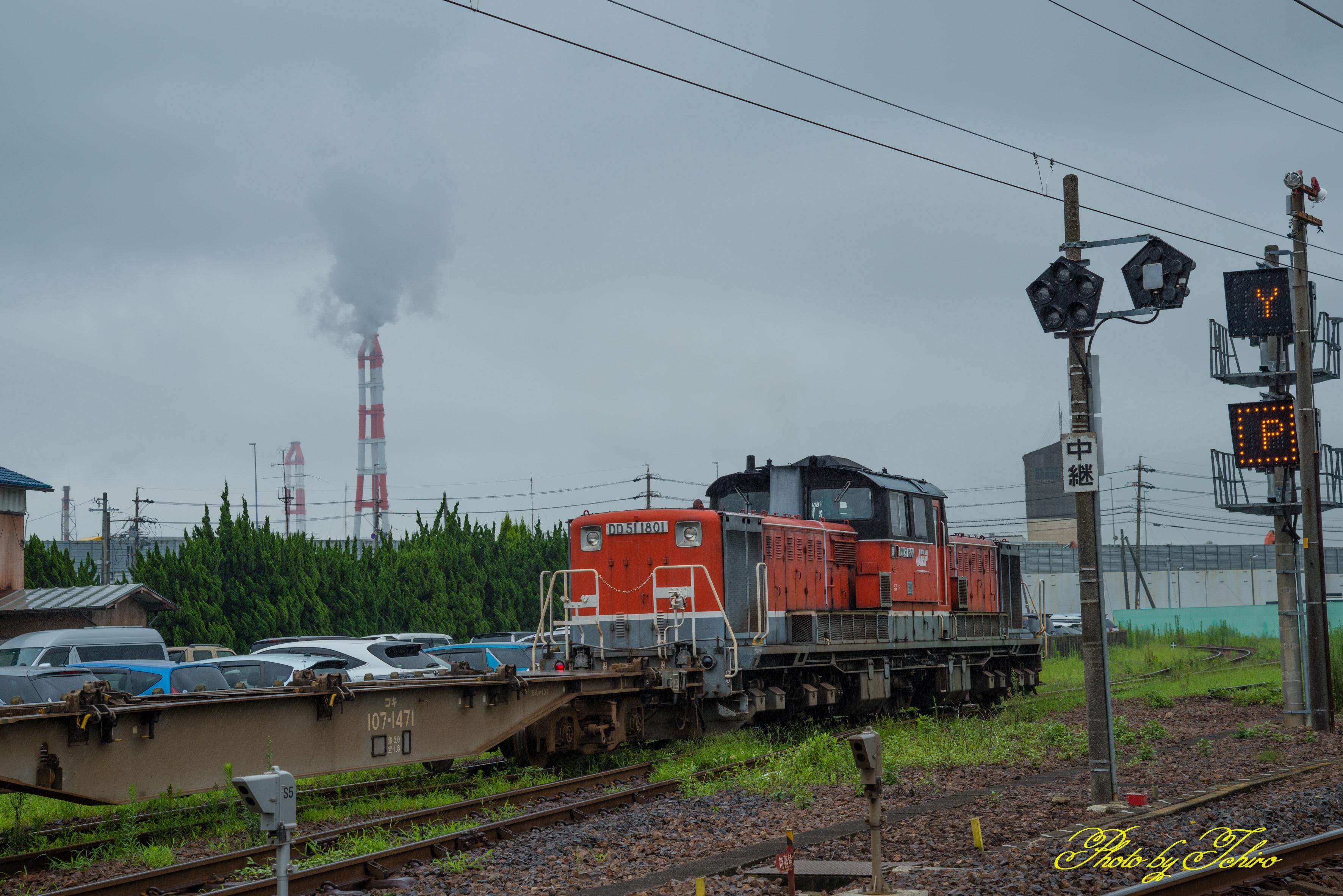 D80_9544-3500wn.jpg