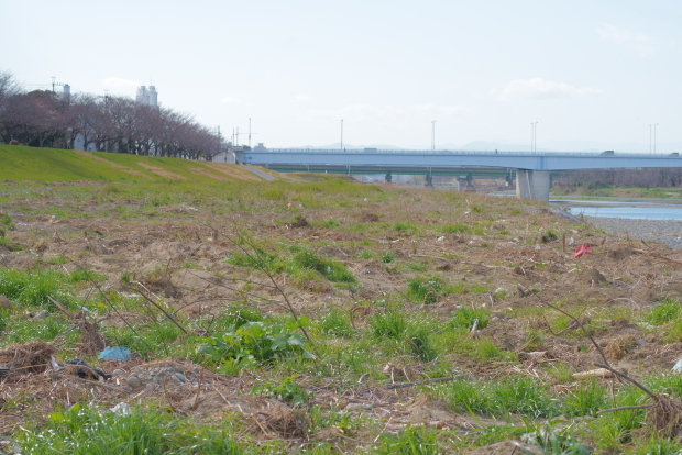 稲城北緑地公園00084112