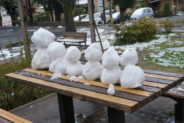 3月の雪00084425