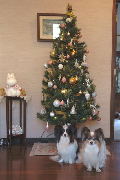 クリスマスツリー 202000085775