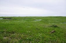 200718gsn044.jpg