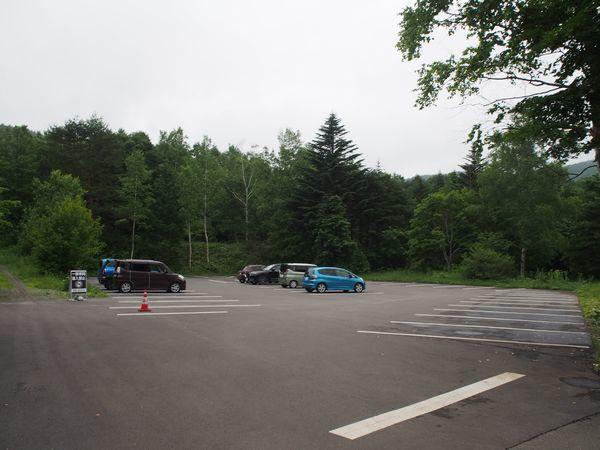 チャツボミゴケ公園