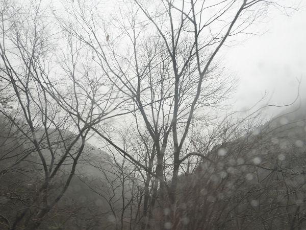 冬の終わり