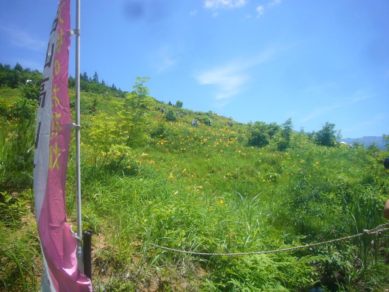 白山高山植物園 全景R2.6.17