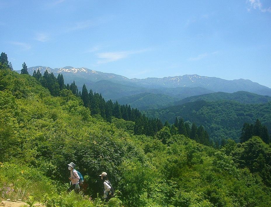 白山高山植物園から白山連峰~3の峰 R2.6.17