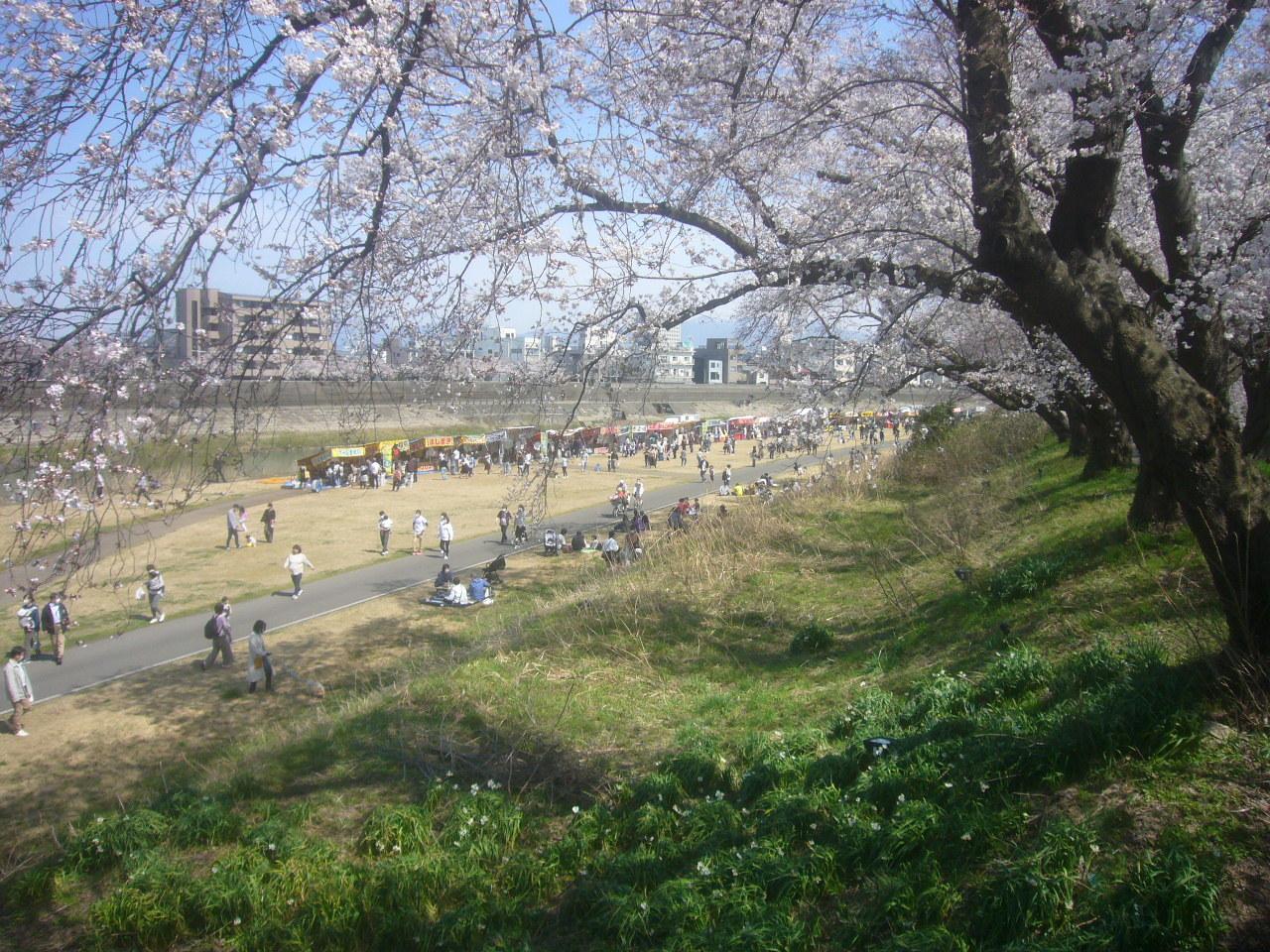お花見宴会 R3.2.27