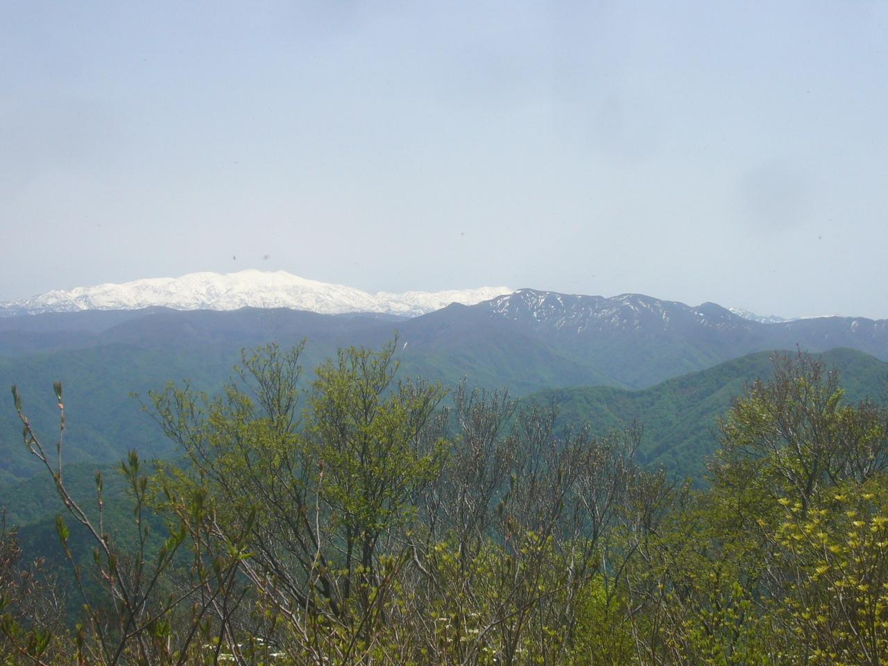 前山から白山 大長山 R3.5.04