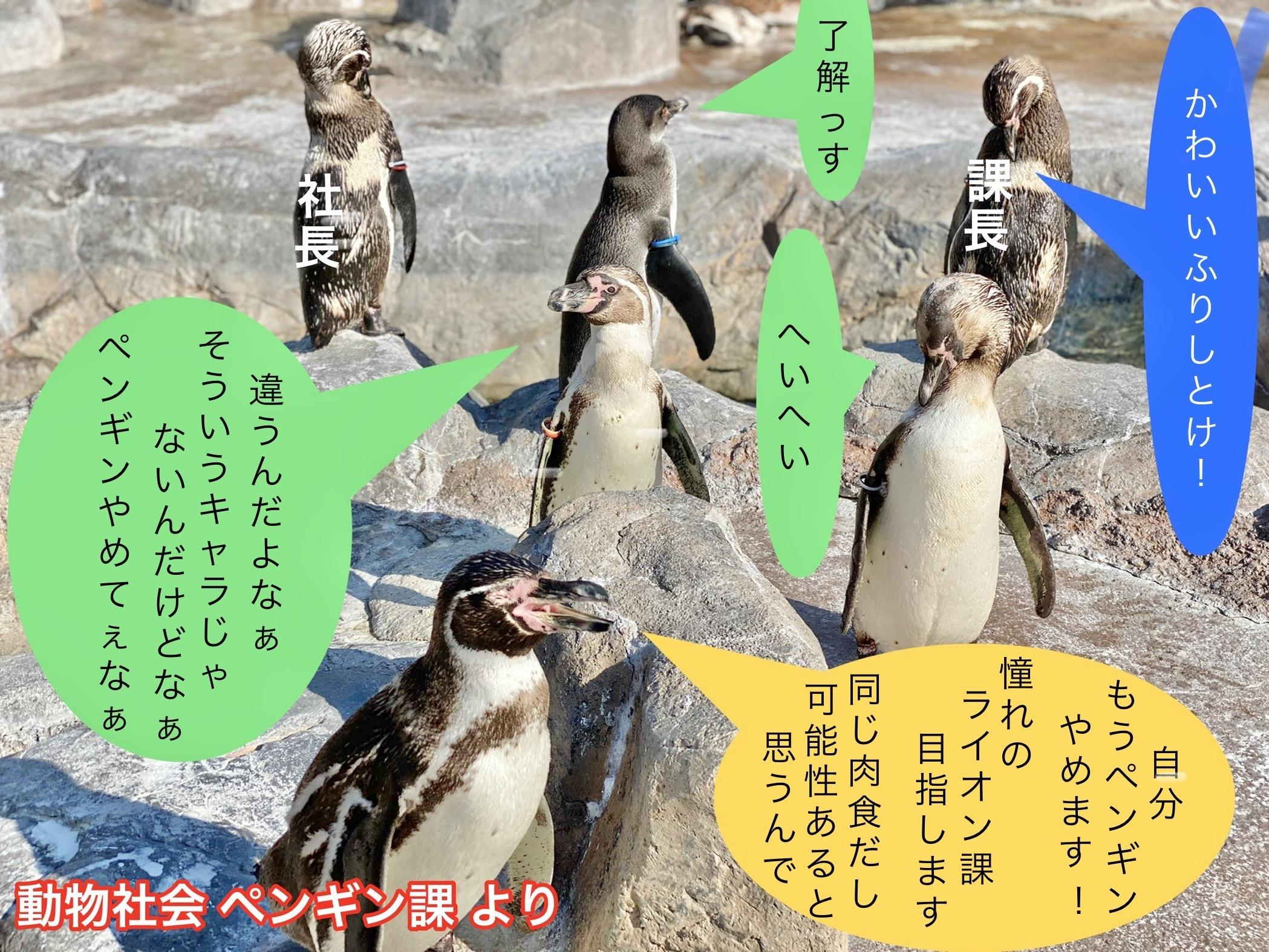 ペンギン課の事情