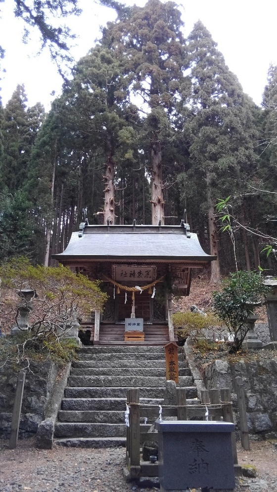 kikou101.jpg