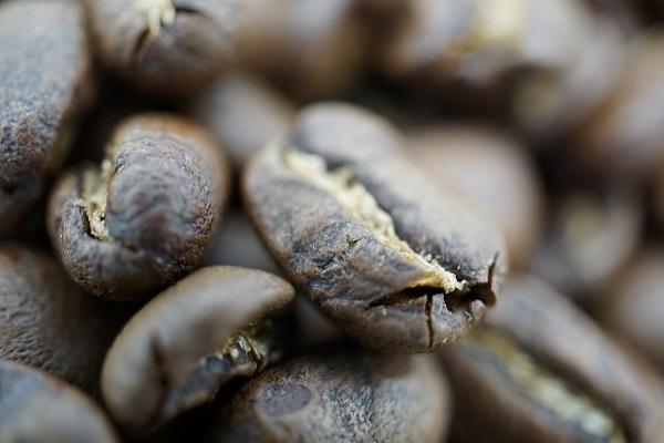 グァテマラ2019豆