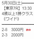 gl530_1.jpg