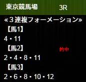 ho52_1.jpg