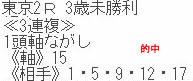 sy530_1.jpg