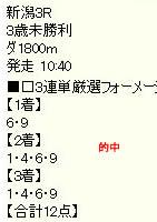 wv517_2.jpg