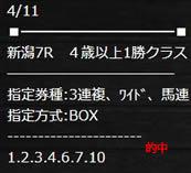 xxx411_2.jpg