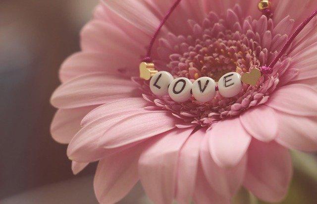 love-3388622_640.jpg