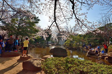 s-蕨公園桜DSC_1995_01
