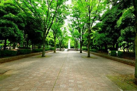 s-蕨中央公園DSC_2298_01