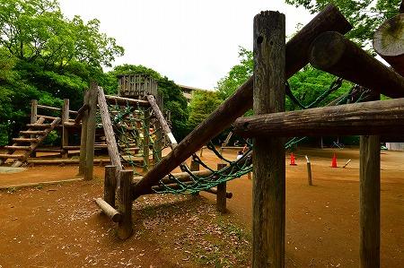 s-蕨中央公園DSC_2304_01
