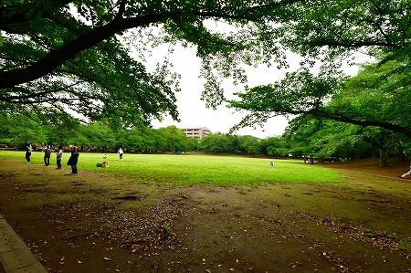 s-蕨中央公園DSC_2318_01