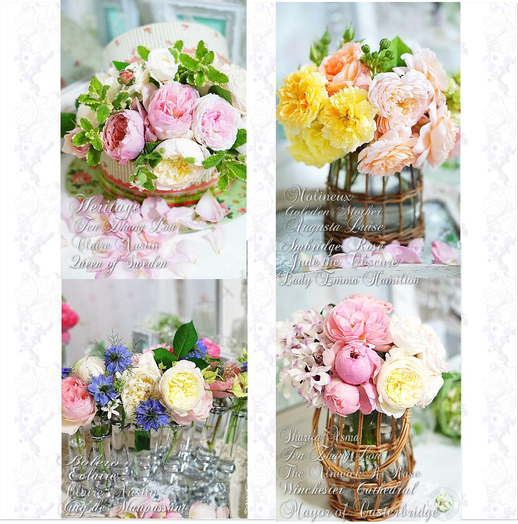 5-rosee.jpg