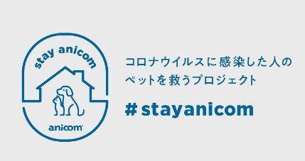 stayanicom.jpg