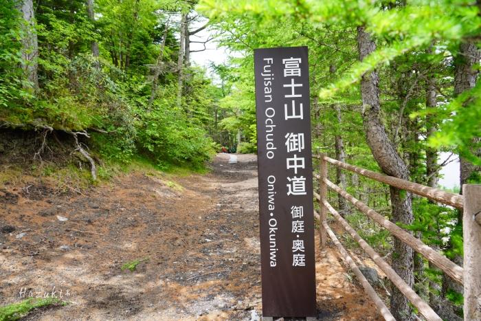 富士山DSC05634-2