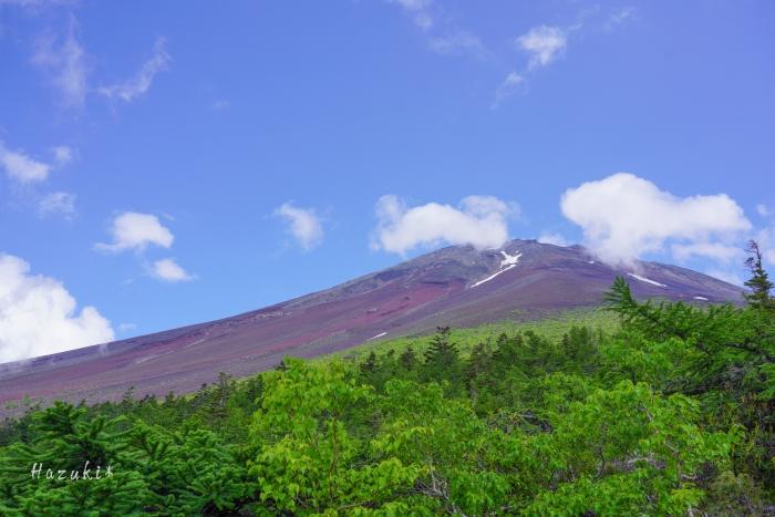 20200629-富士山DSC05887