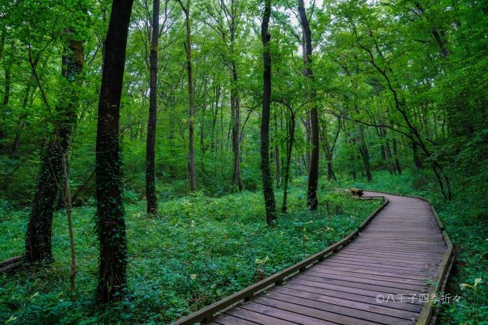 小宮公園1