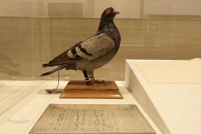 20200820-新聞博物館DSC01562