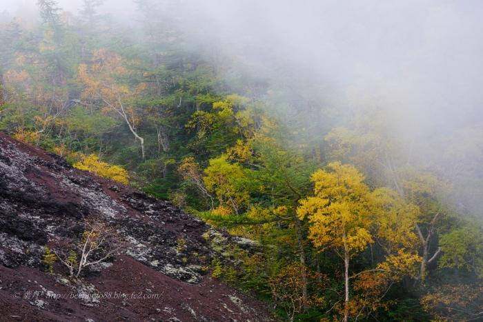 富士山御中道⑩9