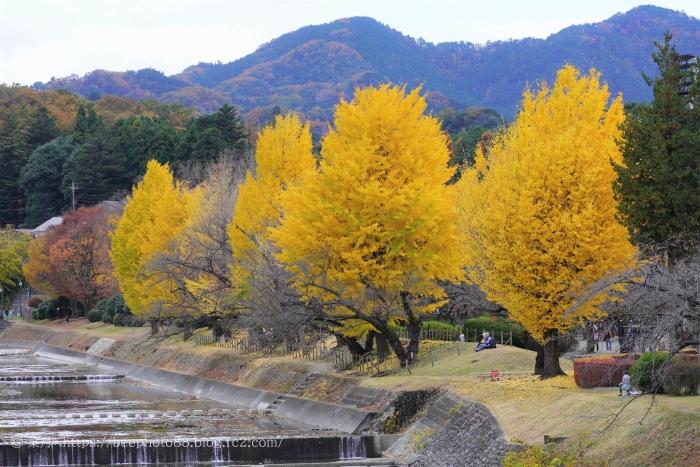 綾南公園2020⑩