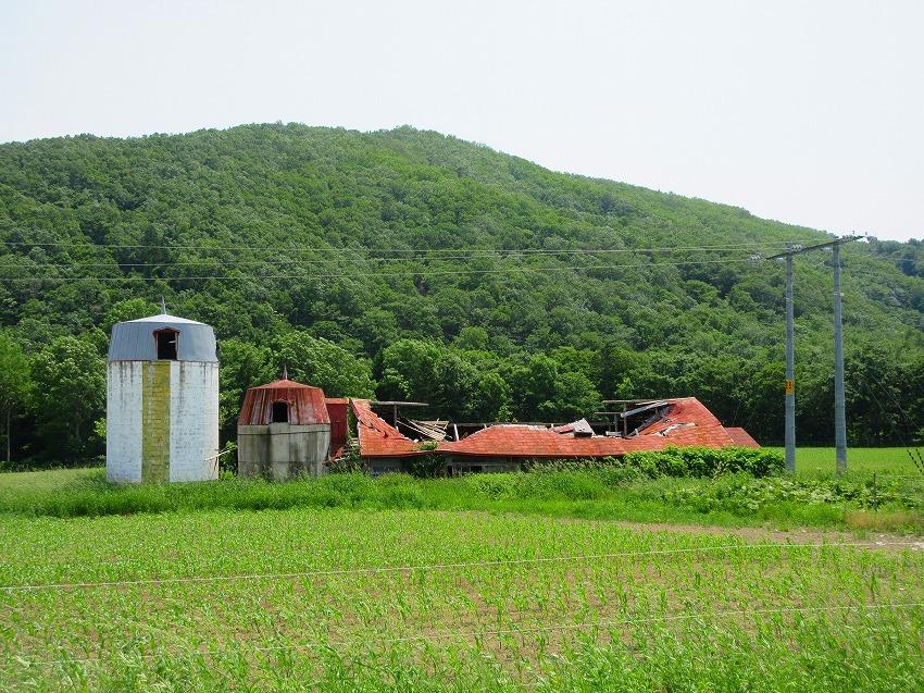 2017西興部村
