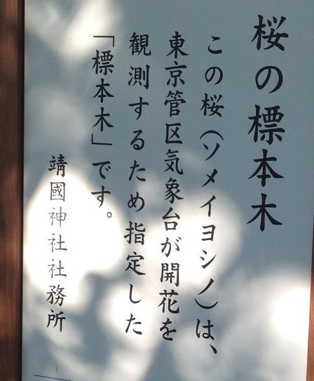 YASUKUNI (113)