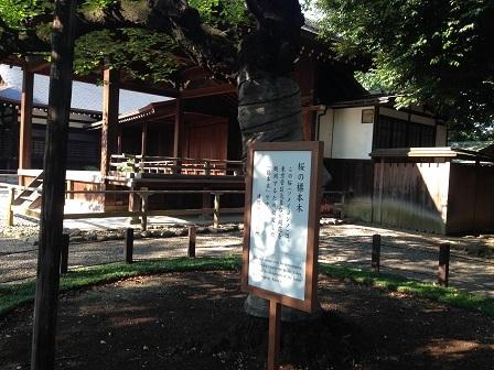 YASUKUNI (115)