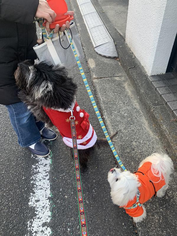 04_クリスマス