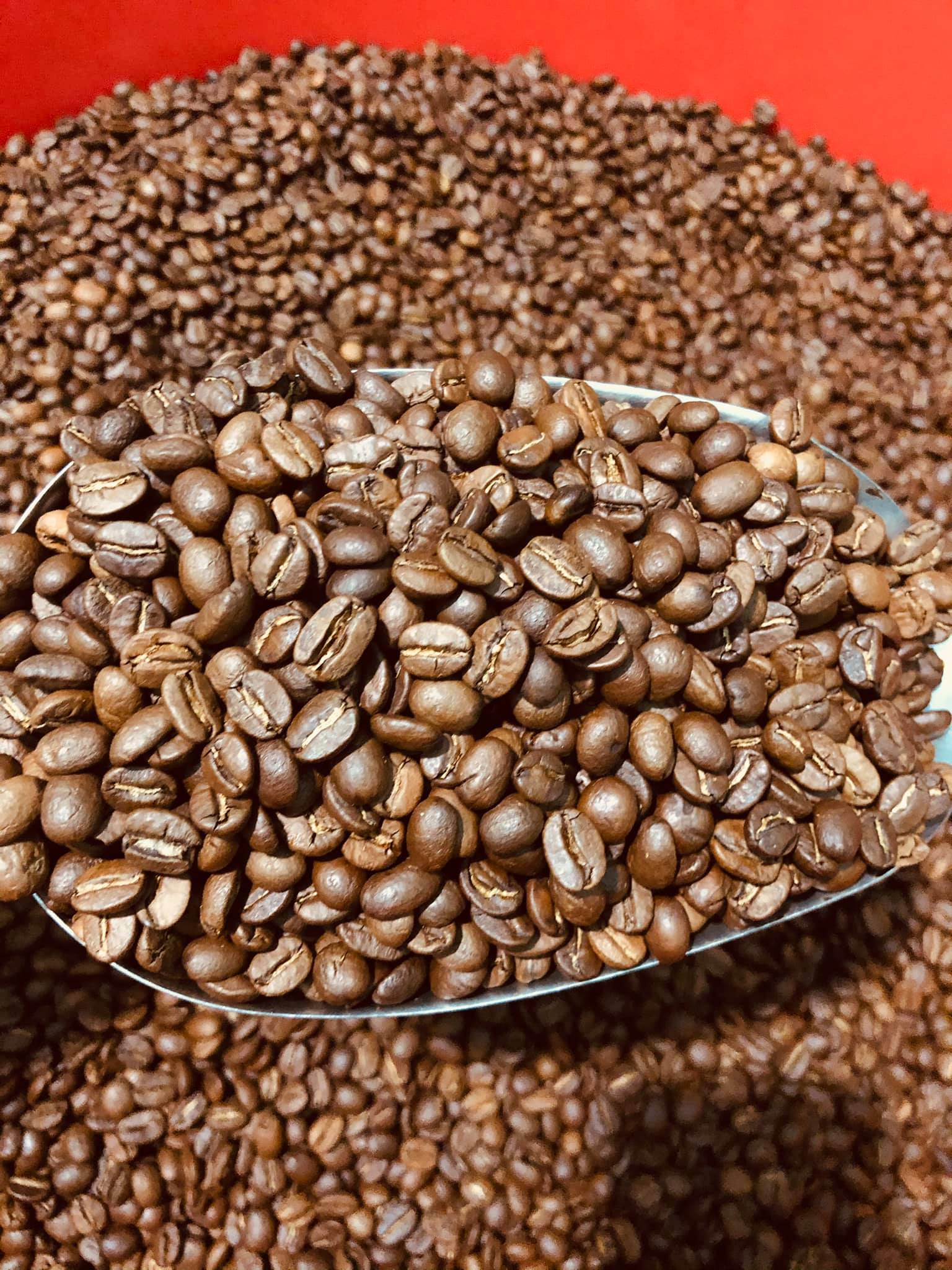 No.1 coffee bean supplier in Vietnam, Robusta and Arabica with export standards.