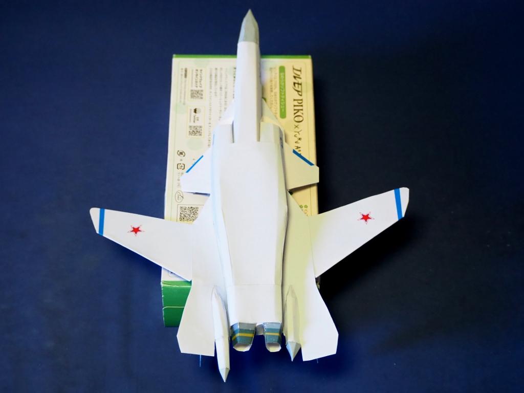 Su-47_berkut_Ver3_btm.jpg