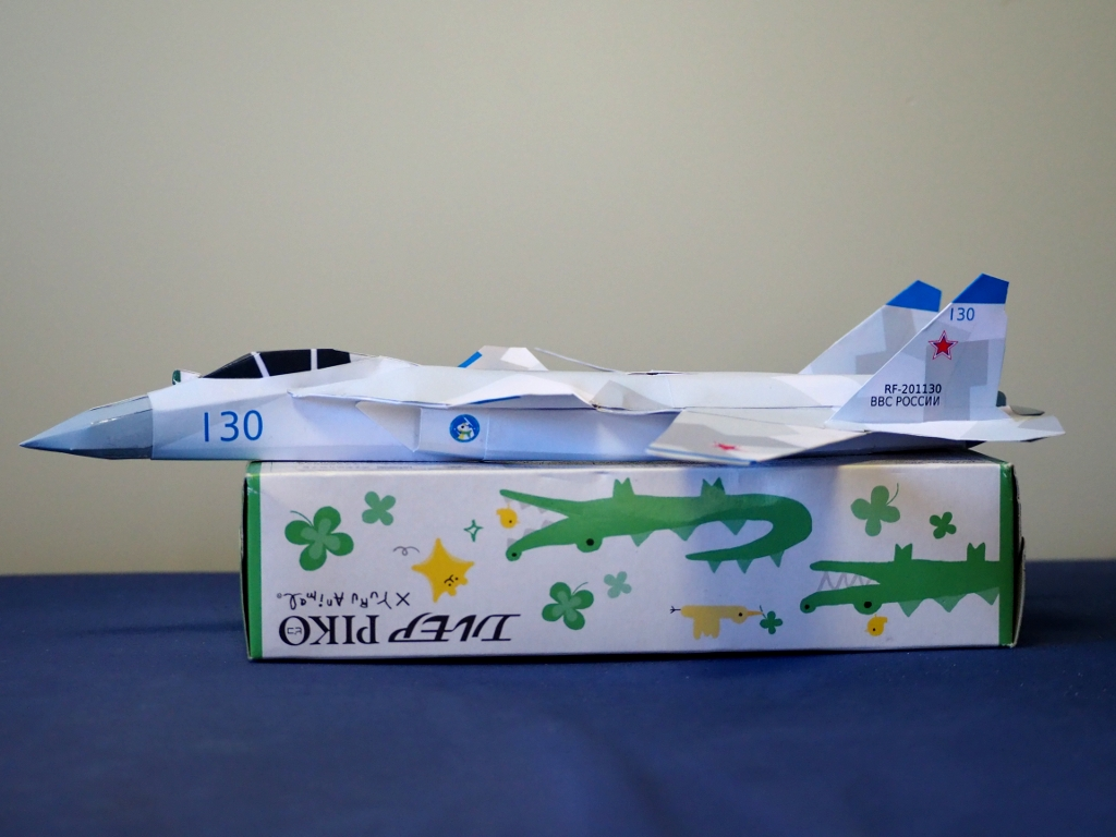 Su-47_berkut_Ver3_side.jpg
