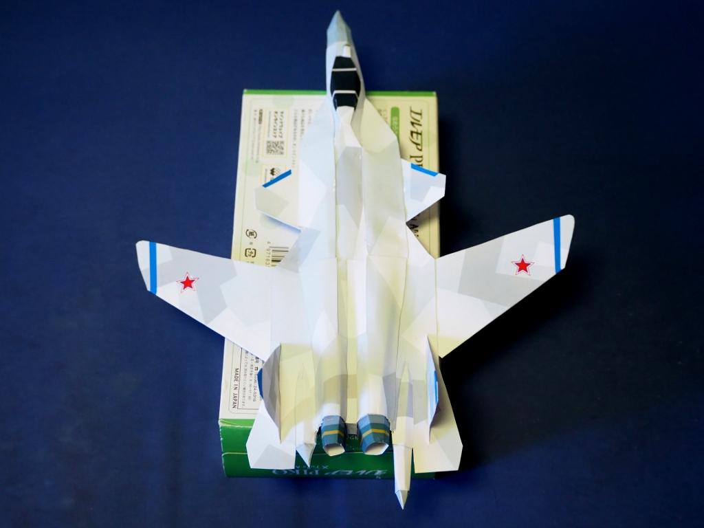 Su-47_berkut_Ver3_top.jpg