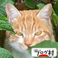 IMG_4003.jpg