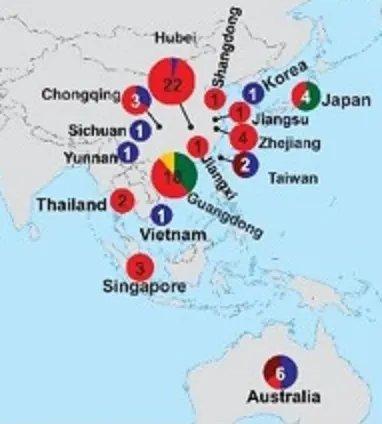 中国周辺の新型コロナウィルス系統