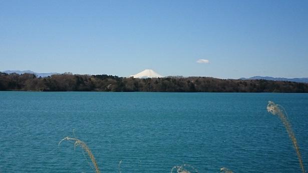 多摩湖 2