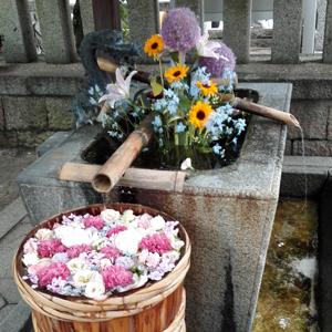 6月27日野見神社blog02