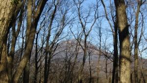201122峠~山 (1)