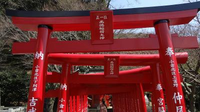 s淡島神社内のお稲荷様