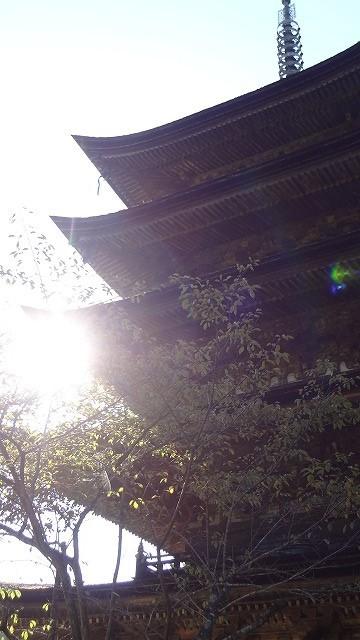 瑠璃光寺の光