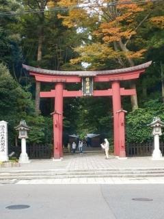 20201029弥彦神社