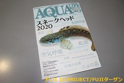アクアライフ2020 6