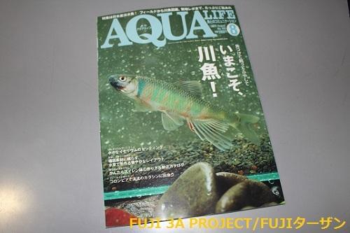 アクアライフ2020 8